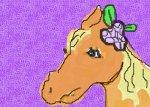 I love Horses!!!