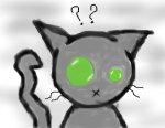 Meow?O.o