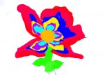 :D my many colored flower >:D