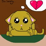 Lonely Kitty