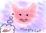 The Hungry Cat