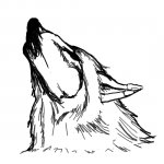 Illussion - Wolf or Woman?